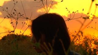 【キネヅッカ】『さがすエクスプリシット』佐々木智崇監督〜〆切迫る19th CHOFU SHORT FILM COMPETITION特集入選作振り返り